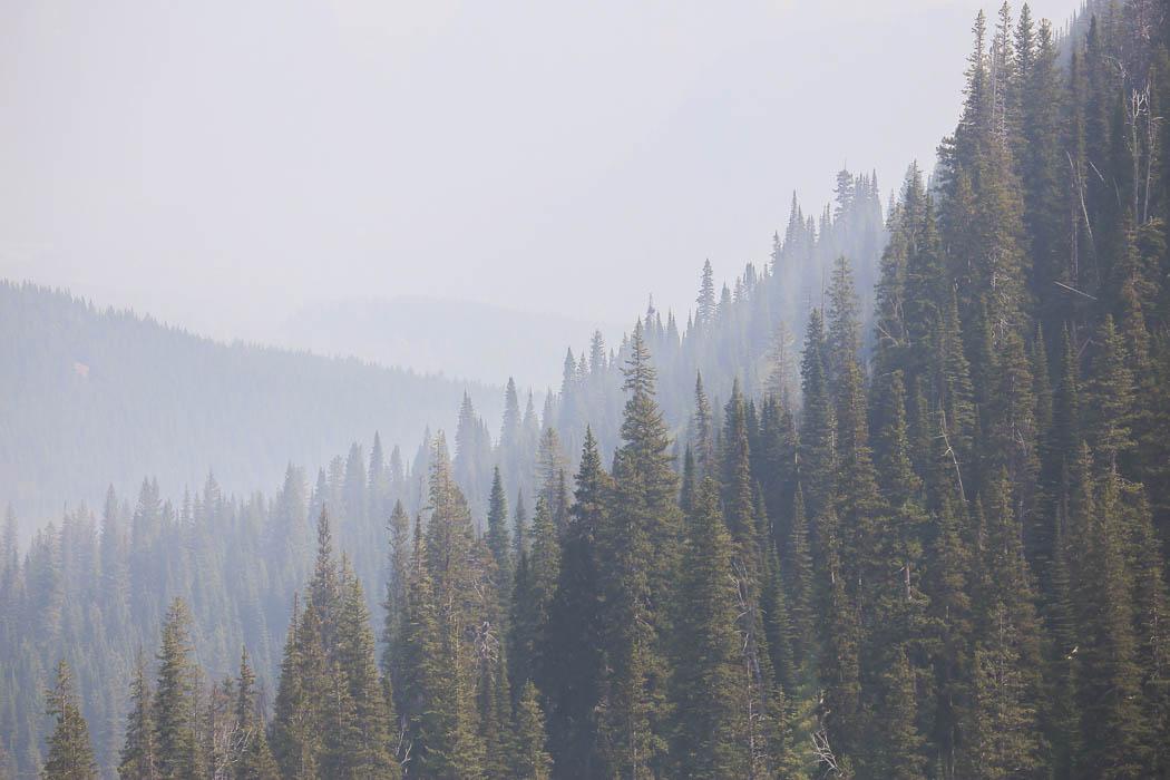 Vy från Glacier National Park, Montana.
