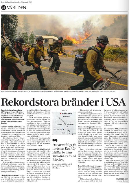 Sidan i tidningen.