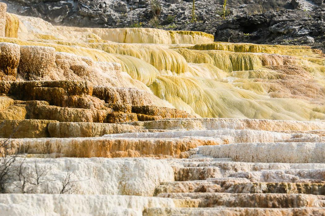 Mammoth Hot Springs, norra Yellowstone.