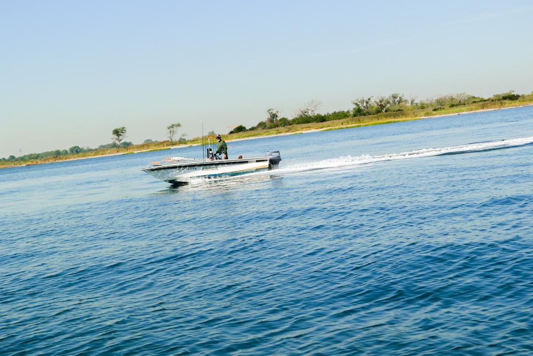 Varför inte en tur på Jamaica Bay en fin tisdag som denna.