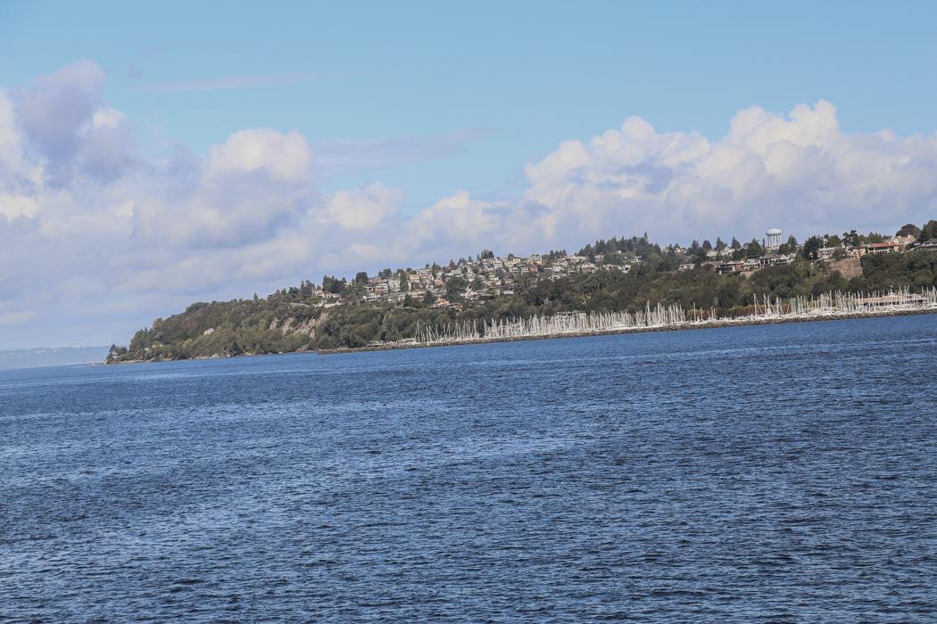 Småbåtshamn på avstånd i södra Seattle.