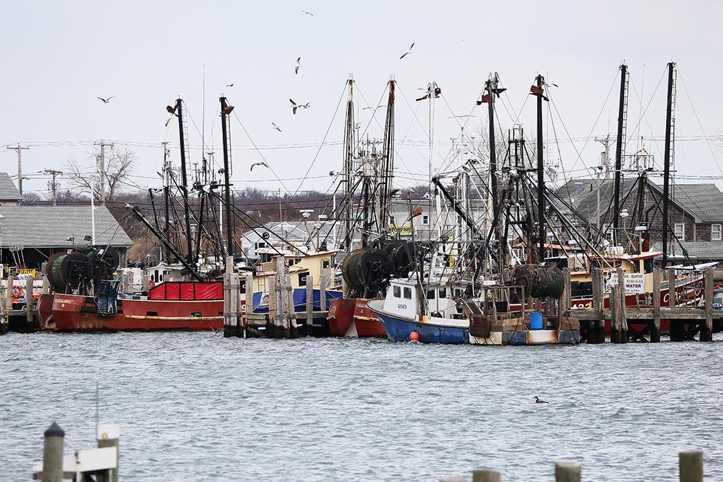 Fiskeflottan i Snug Harbor. Foto: Erik Bergin