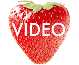 shortcut-video-berry