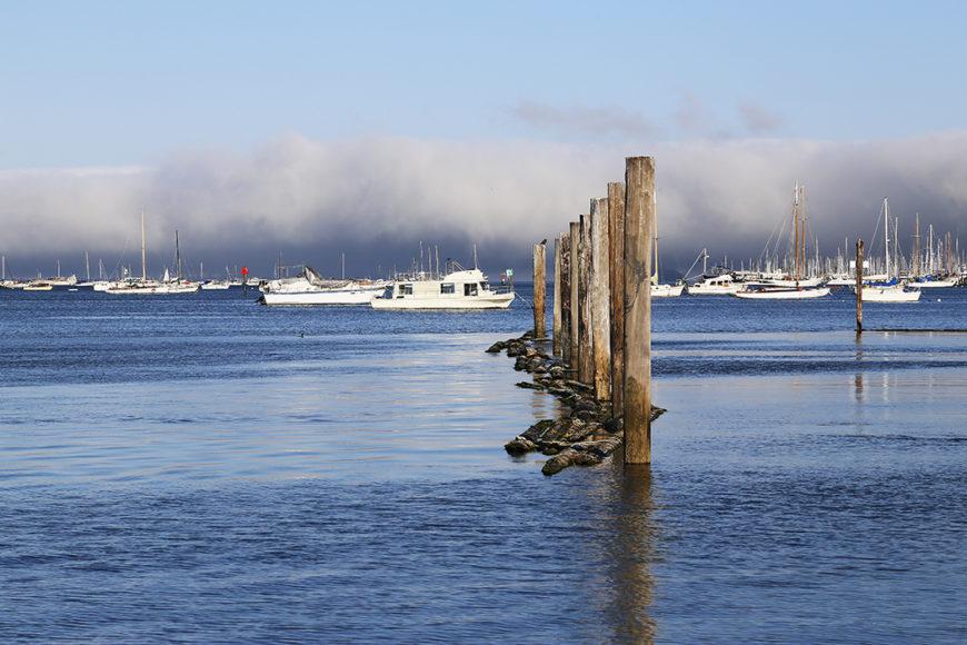boat-harbor-5