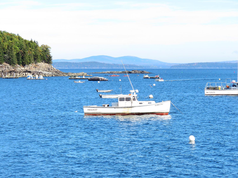 Fiskebåtar för ankar utanför Bar Harbor, Maine. Foto: Erik Bergin
