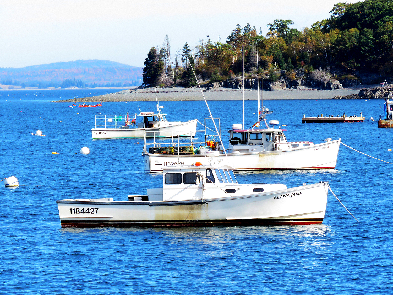 Båtar för ankar utanför Bar Harbor, Maine. Foto: Erik Bergin
