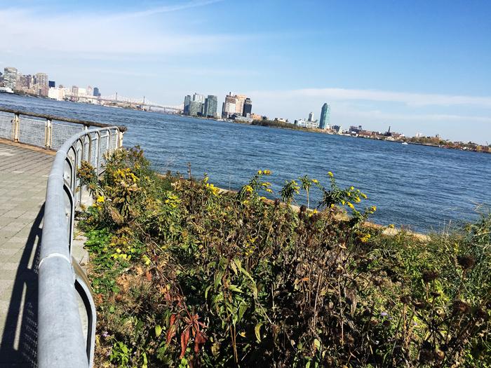 East River idag, lördag.