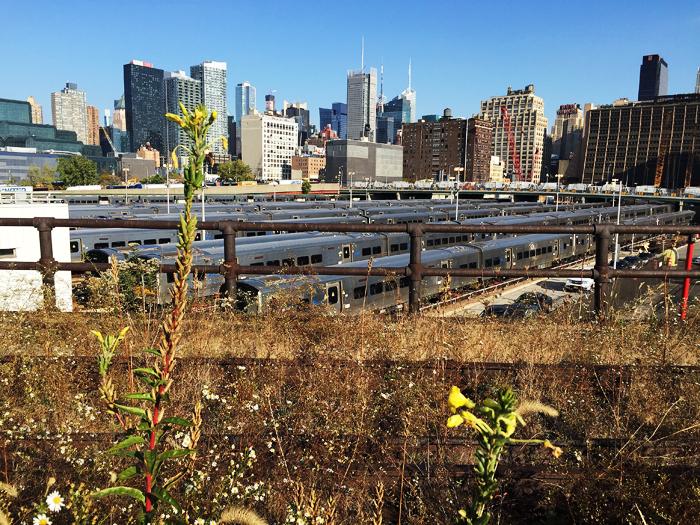 Hudson Yards, som ska däckas över.