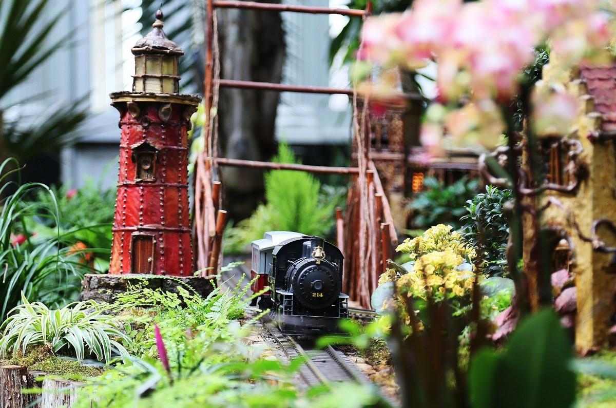 Ett ånglok passerar en blommig by.