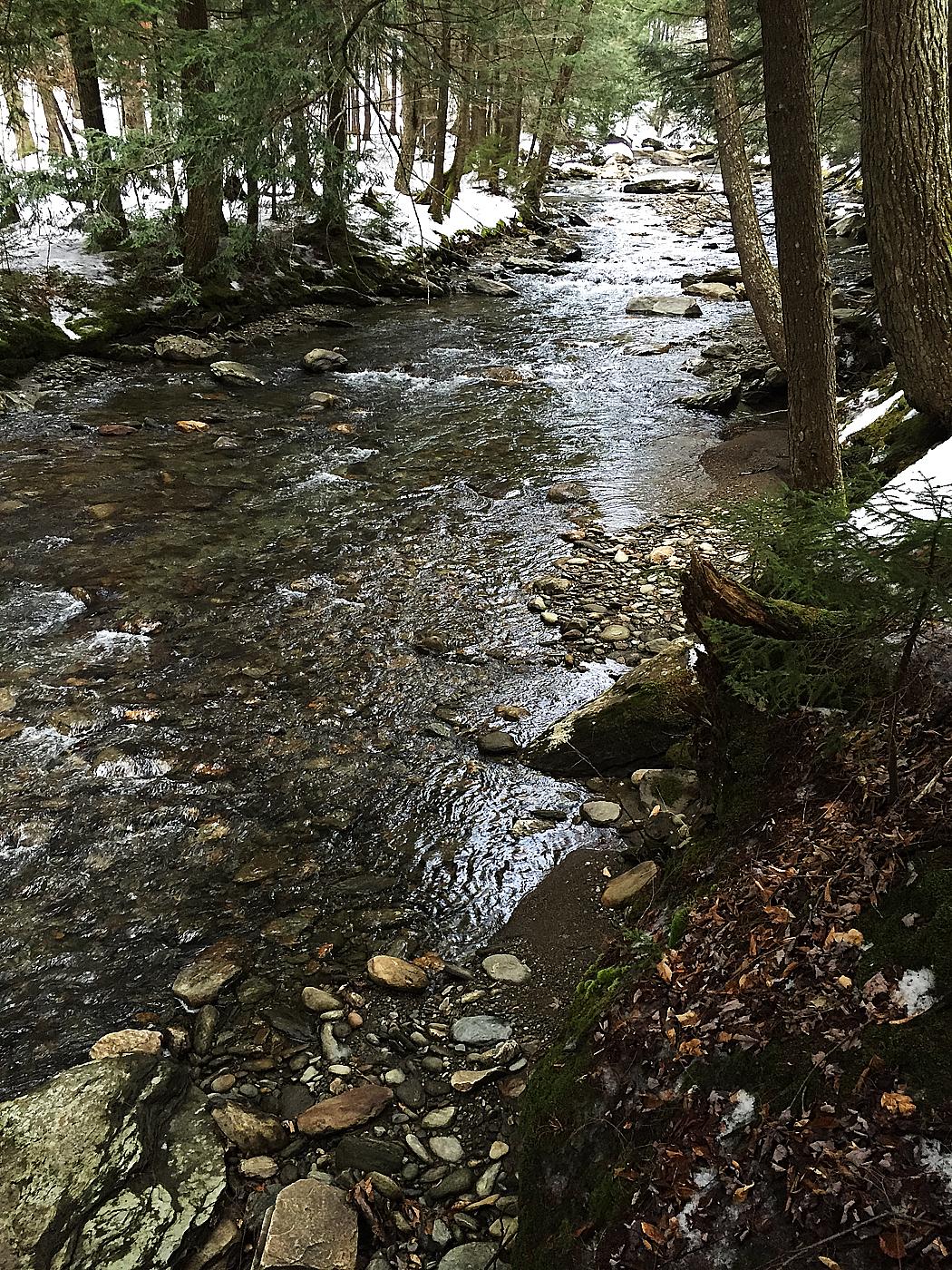 En bäck rinner utmed en vandringsled i skogen nära Stowe.