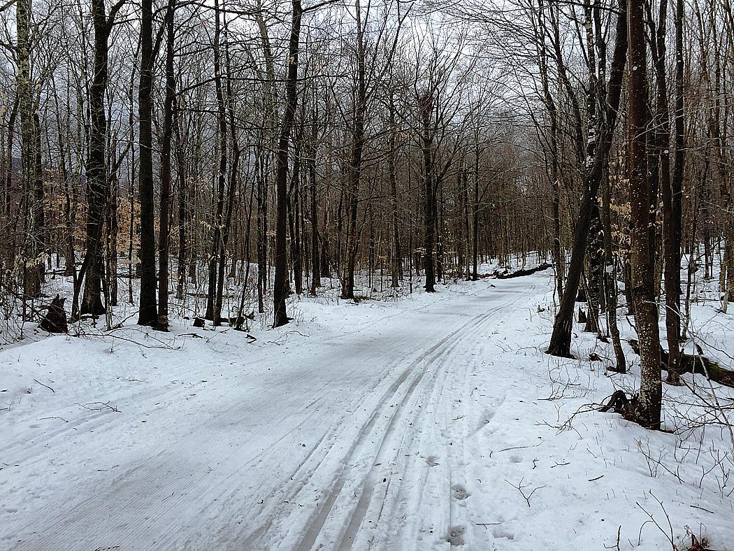Längdskidspåren i Stowe var delvis bortregnade och bitvis ganska isiga, men det var kul ändå.