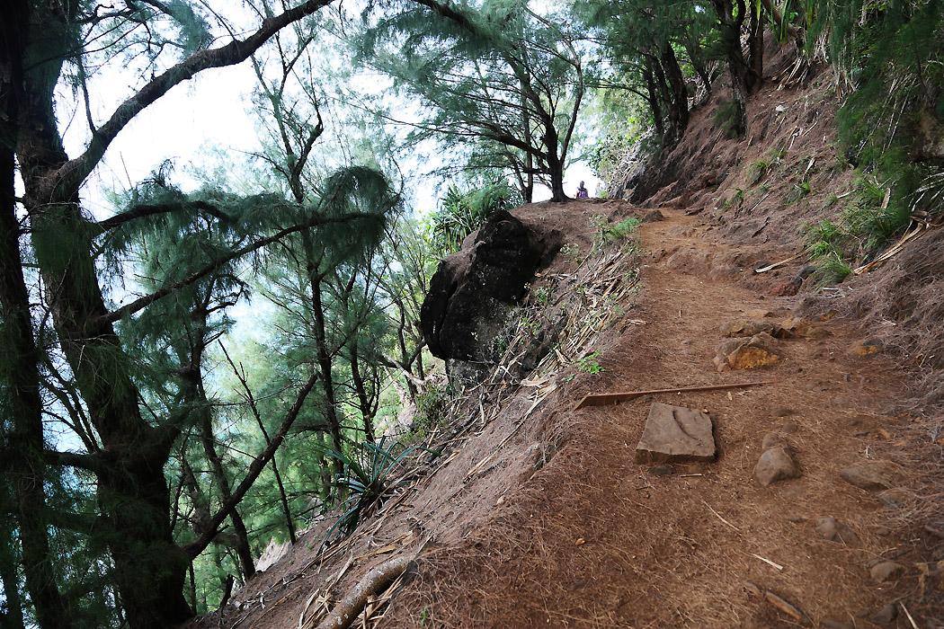 Gångstigen Kalalu Trail, norra Kauai.