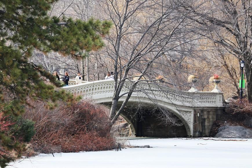 Kompakt is täcker dammarna i Central Park den 16 mars 2015.