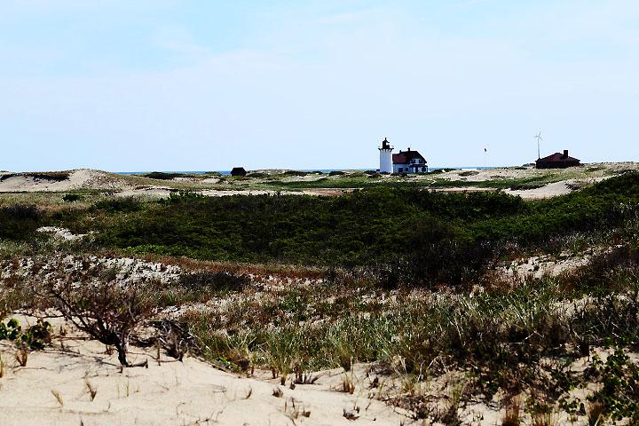 Sanddynerna längst norrut på Cape Cod.