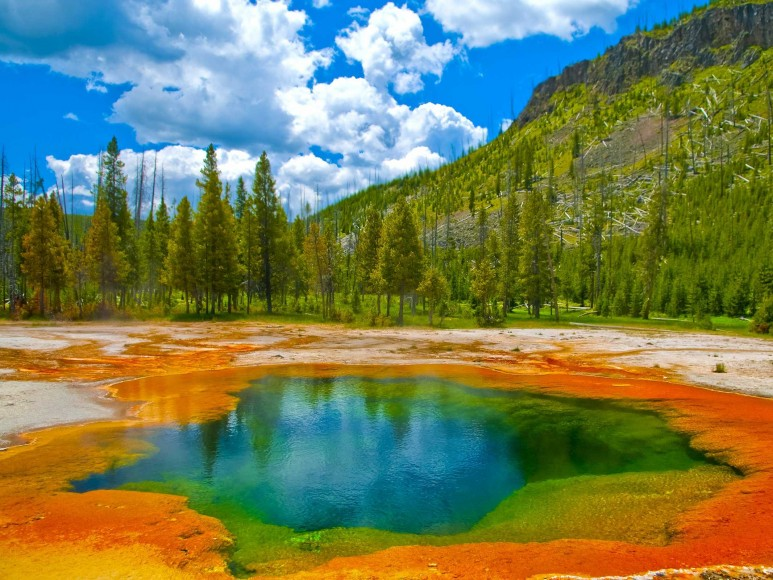 Yellowstone National Park, Wyoming.