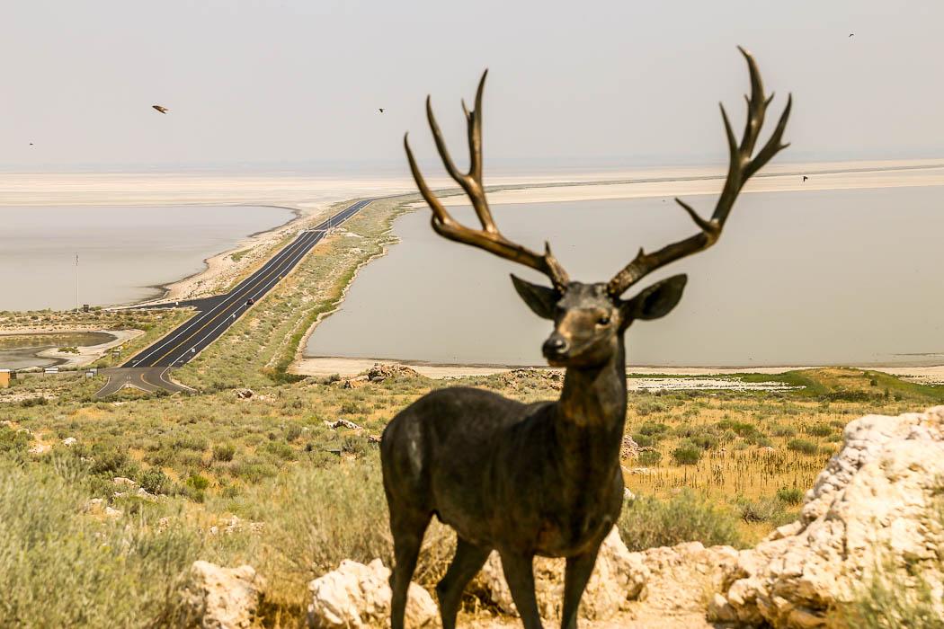 En modell av en antilop i förgrunden framför vägen som leder ut till Antelope Island i The Great Salt Lake.