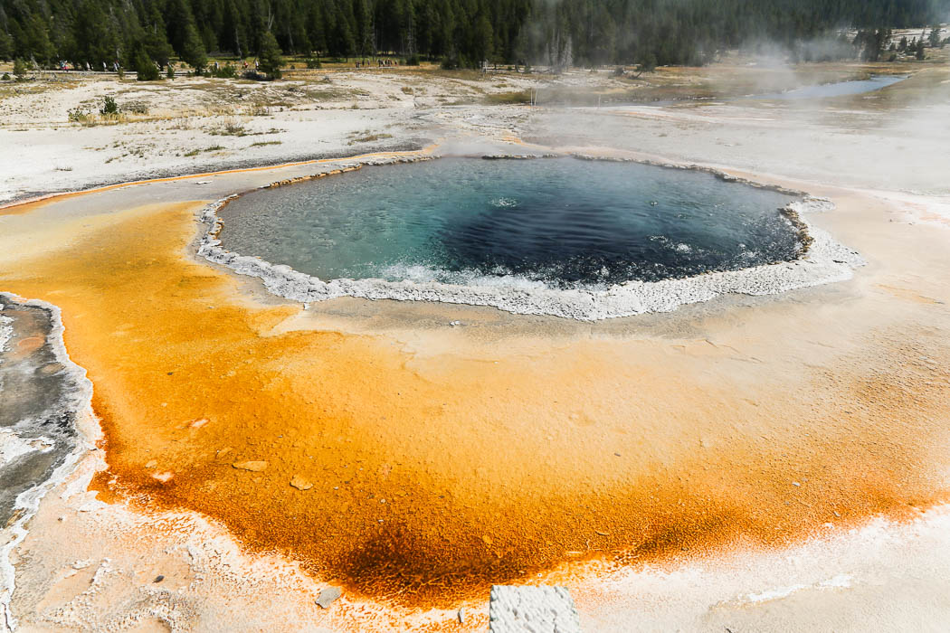 yellowstone1-aug2015-8