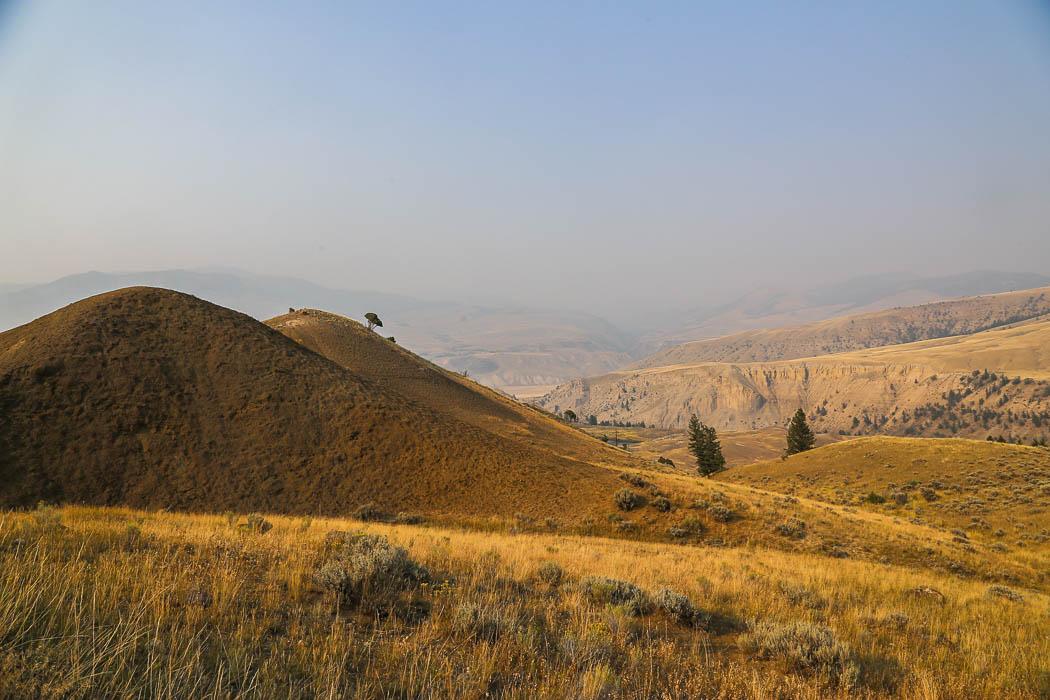 Naturlandskapet i Yellowstone är mycket varierande. Ena minuten tät gran- eller tallskog, nästa böljande gräsfält.