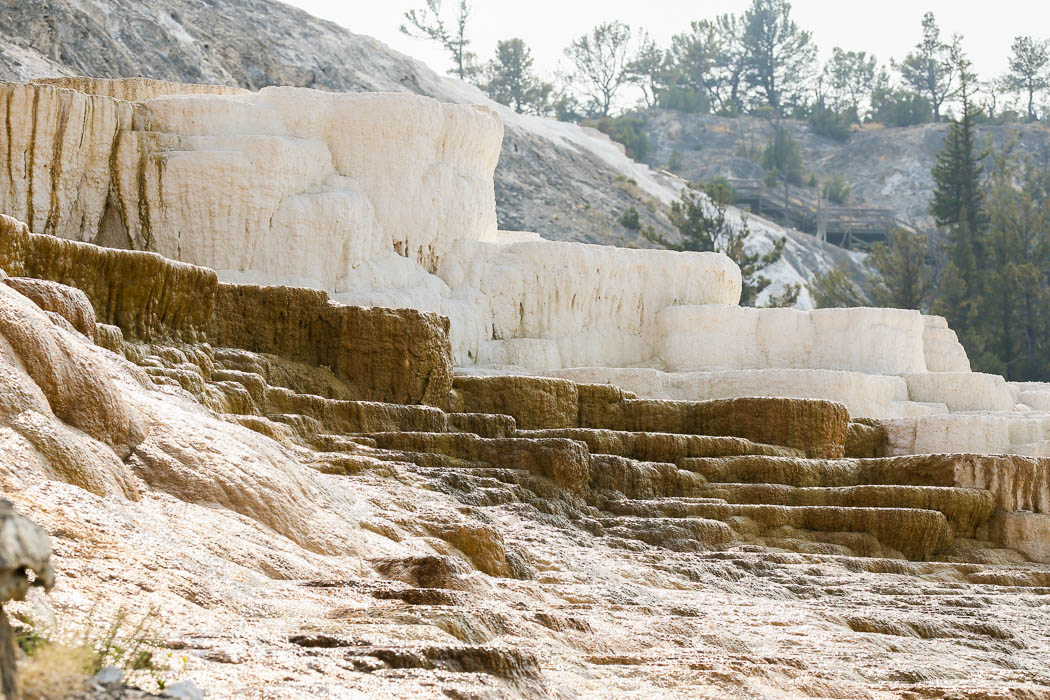 Mammoth Hot Springs, norra Yellowstone.
