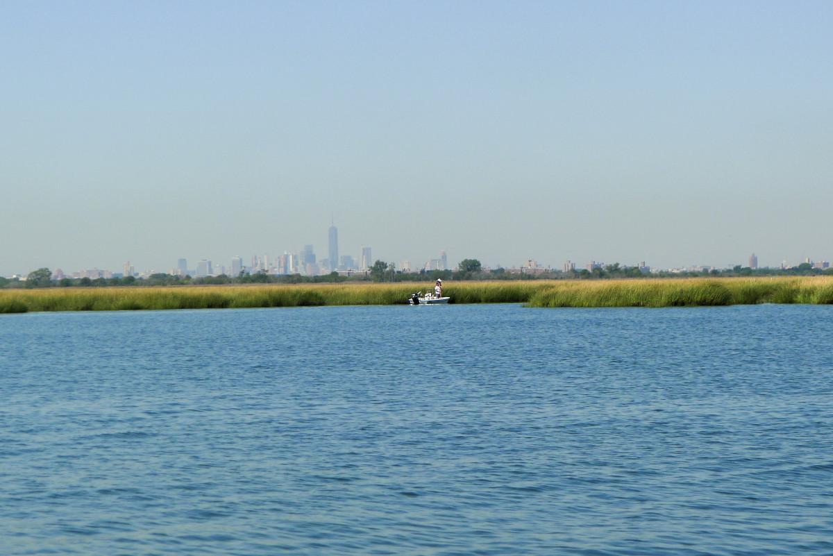 Naturreservatet Jamaica Bay med Manhattans skyskrapor i fjärran.