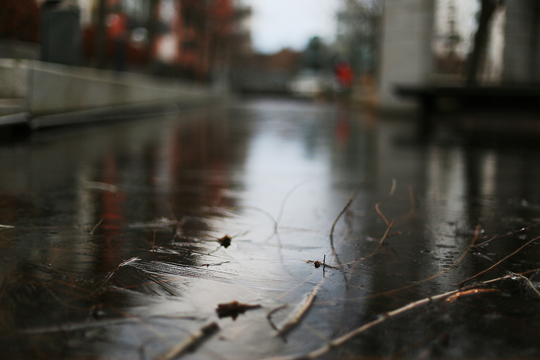 Isen har frusit på en av kanalerna.