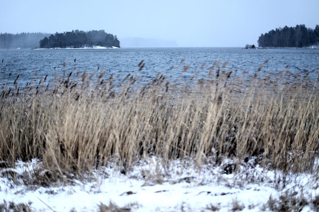 Riktning söderut från Ljusterö.