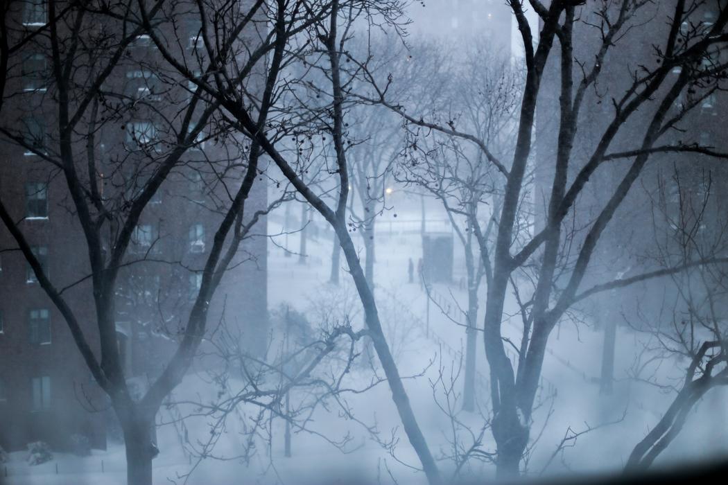 winterchaos-nyc-jan2016-5