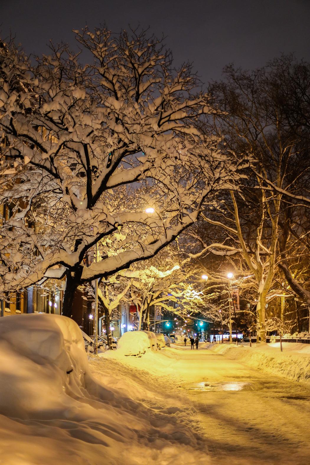 winterchaos-nyc-jan2016-III-7