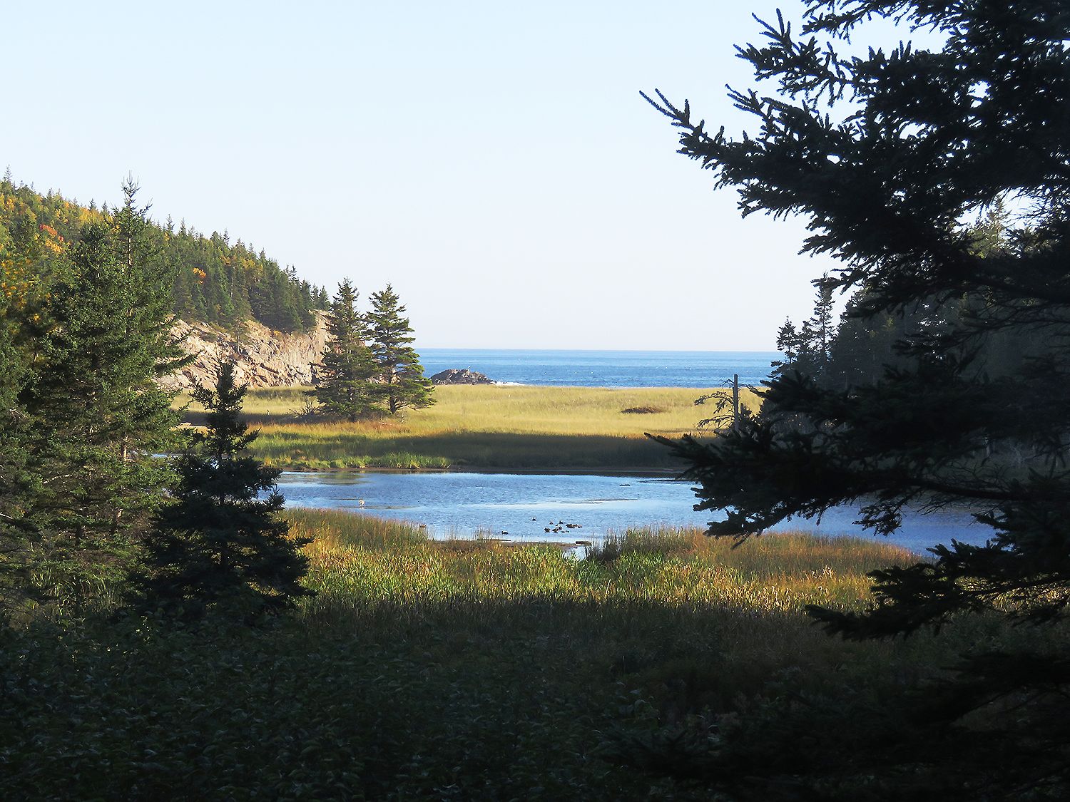 Acadia National Park. Foto: Erik Bergin